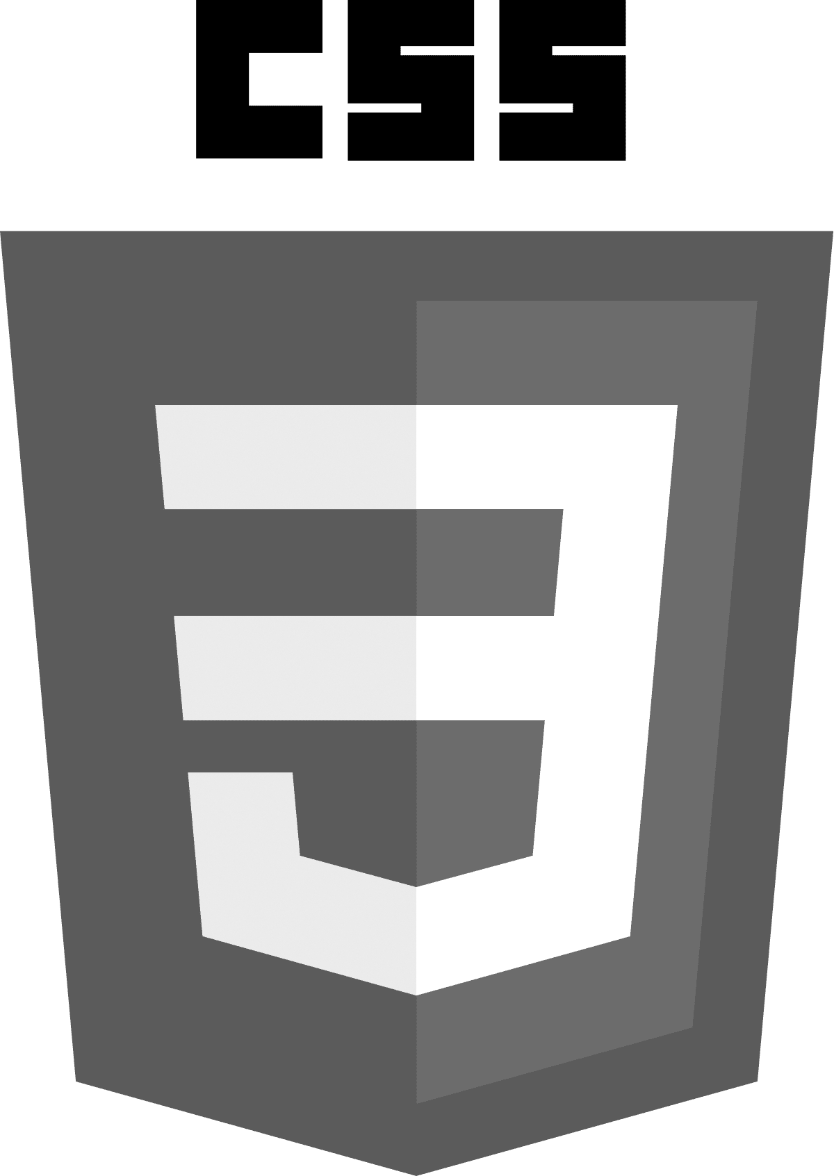 CSS3_logo_and_wordmark